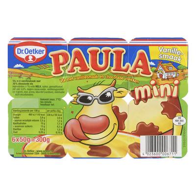 Dr. Oetker Paula mini vanille met choco vlekken