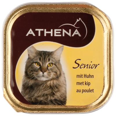 Athena Kattenvoer senior, kip