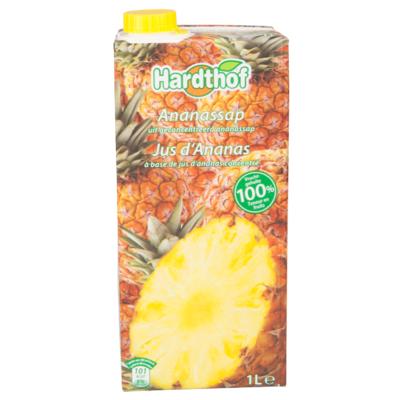 Fruit Action Ananassap