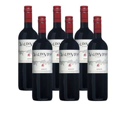 Valdivieso Merlot Central Valley