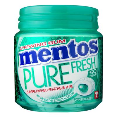 Mentos Gum Bottle pure fresh wintergreen