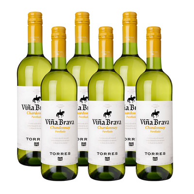 Torres 6 x Viña Brava Chardonnay Parellada