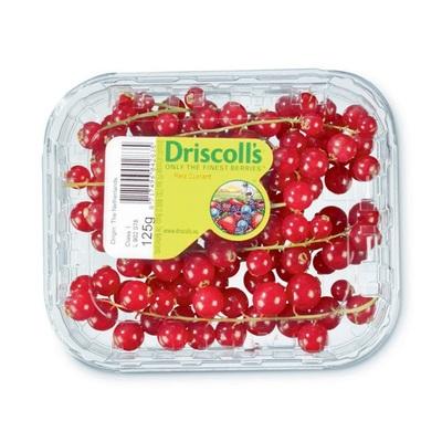 Driscoll's rode bessen
