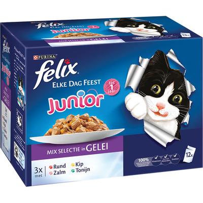 Felix Elke dag feest junior