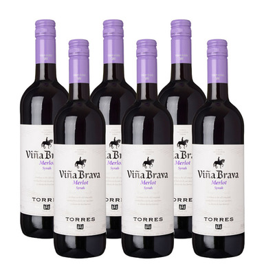 Torres 6 x Viña Brava Merlot Syrah