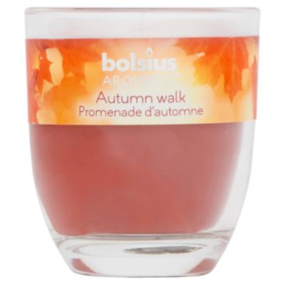 Bolsius Geurglas 80/70 autumn walk