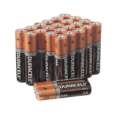 Duracell AA Alkaline Batterijen