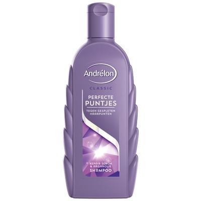 Andrelon Shampoo Perfecte Puntjes
