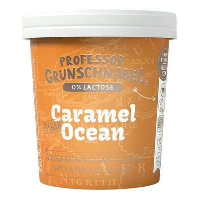 Prof Grunschnabel Naturel vegetal ice caramel