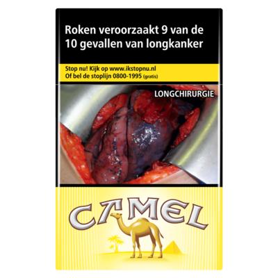 Camel Regular