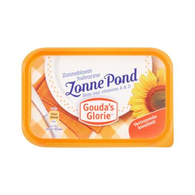 Gouda's Glorie Zonne Pond