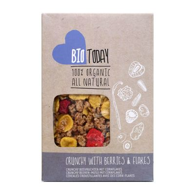 Biotoday Cornflakes Crunch & Bosvruchten