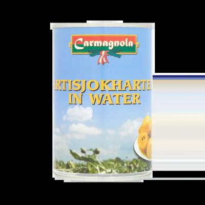 Carmagnola Artisjokharten in Water